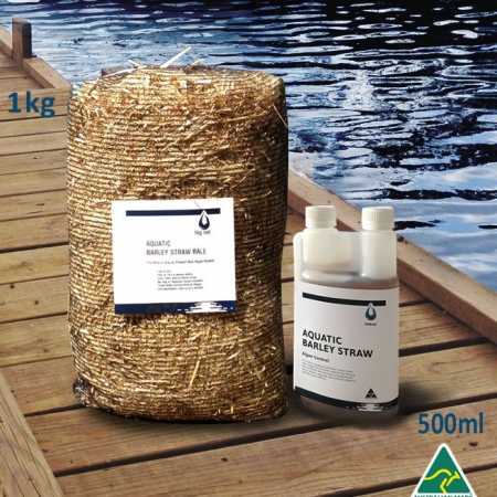 aquatic-barley-straw-bale-fight algae